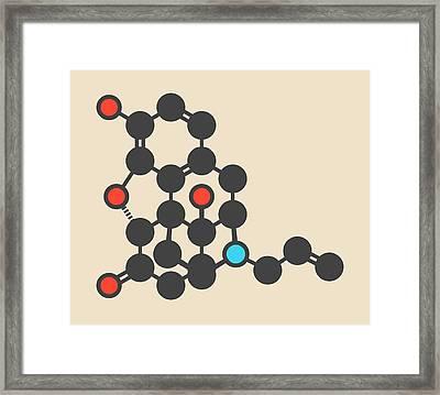 Naloxone Molecule Framed Print