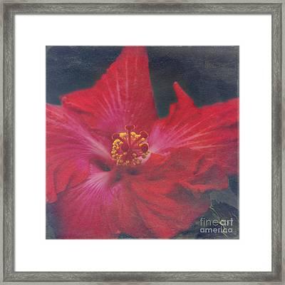 Nanakuli Floral Celebration Framed Print by Sharon Mau