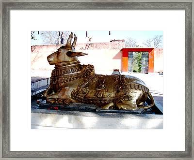 Nandi Framed Print by Anand Swaroop Manchiraju