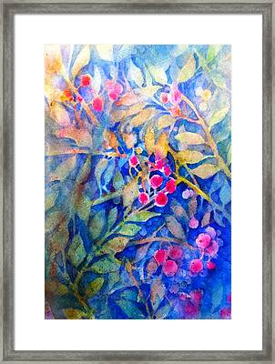 Nandina Framed Print