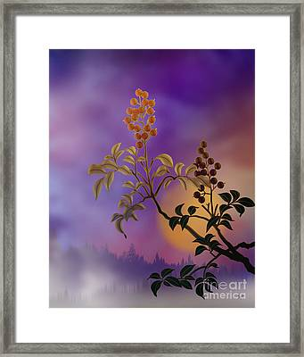Nandina The Beautiful Framed Print by Bedros Awak