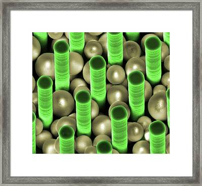 Nanoparticles Trapped In Pillar Array Framed Print