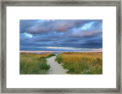 Nantucket Beach Path Framed Print