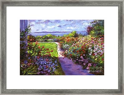 Nantucket Island Garden Framed Print by David Lloyd Glover