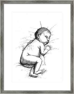 Nap Time Framed Print by Lee Halbrook