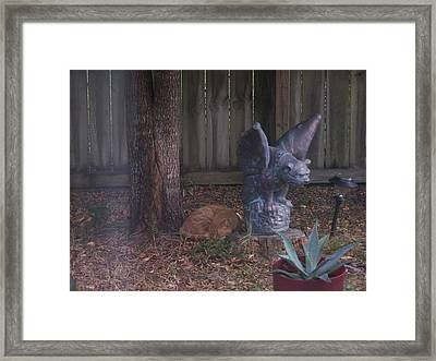 Framed Print featuring the photograph Nap Time by Michele Kaiser