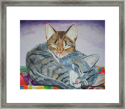 Nap Time Framed Print