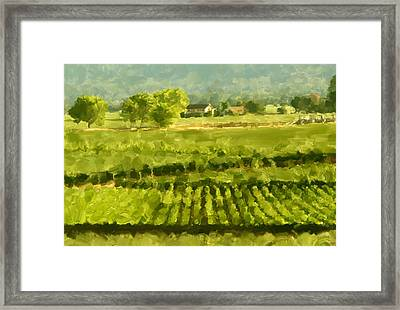 Napa Detail Framed Print by Paul Tagliamonte