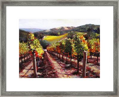 Napa Hill Side Vineyard Framed Print by Takayuki Harada