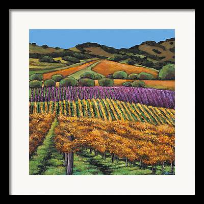 California Vineyard Framed Prints