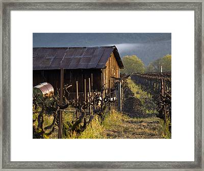 Napa Morning Framed Print