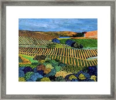 Napa Valley Autumn Framed Print