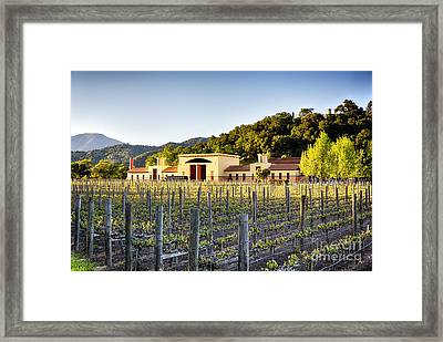 Napa Valley Spring Sunset Framed Print by George Oze