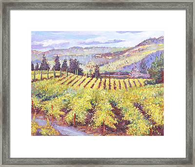 Napa Valley Vineyards Framed Print by David Lloyd Glover