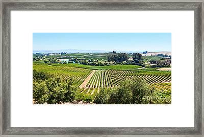 Napa Valley - Wine Vineyards In Napa Valley California. Framed Print by Jamie Pham