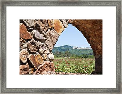 Napa Vineyard Framed Print by Shane Kelly