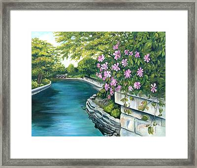 Naperville Riverwalk Framed Print
