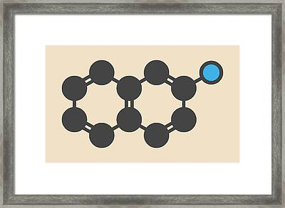 Naphthylamine Carcinogen Molecule Framed Print by Molekuul