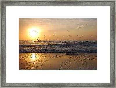 Naples Beach Framed Print by Lorenzo Cassina