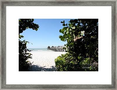 Naples Pier View Framed Print