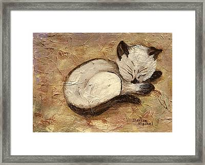 Napping Kitty Framed Print by Darice Machel McGuire