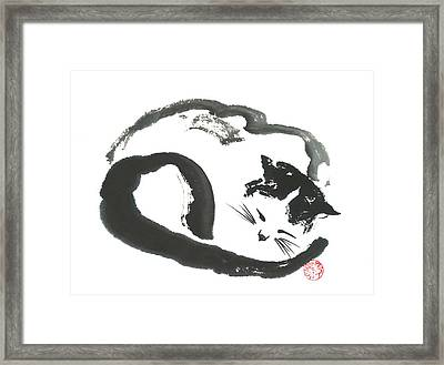 Napping Neko Framed Print