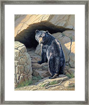 Napping Place Framed Print by Paul Krapf