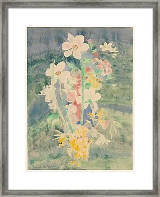Narcissi Framed Print by Charles Demuth