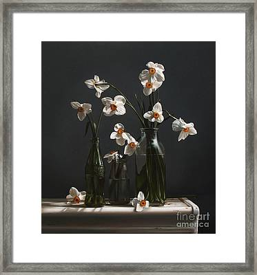 Narcissus And Bottles Framed Print by Larry Preston