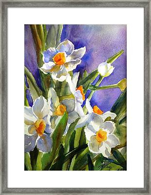 Narcissus Framed Print by Betty M M   Wong