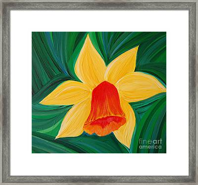Narcissus Diva By Jrr Framed Print by First Star Art