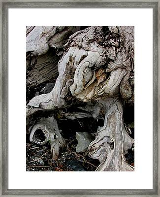 Narley Framed Print by Will Boutin Photos