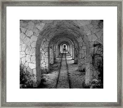 Arched Narrow Gauge Framed Print by Patrick Witz