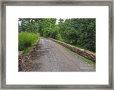 Narrow Road Framed Print