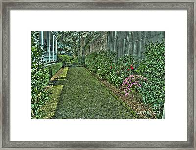 Narrow Urban Garden Framed Print