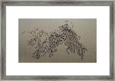 Narures Art - Sand Ball Explosion Framed Print