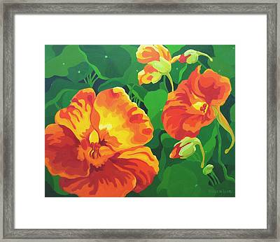 Framed Print featuring the painting Nasturtiums by Karen Ilari