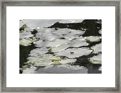 Nasty Weather - Featured 3 Framed Print by Alexander Senin