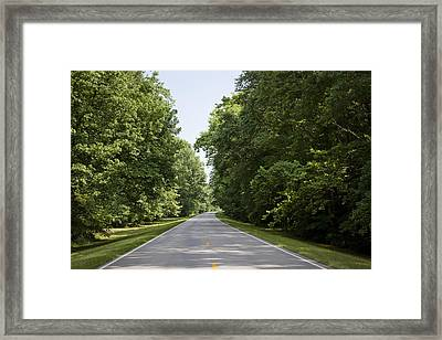 Natchez Trace Parkway In Cobert County Framed Print