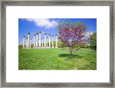 National Capitol Columns, Corinthian Framed Print