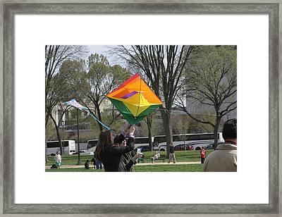 National Mall - Washington Dc - 01134 Framed Print