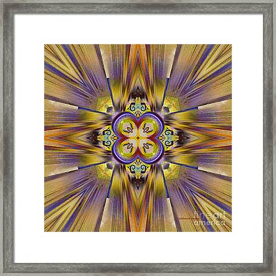 Native American Spirit Framed Print