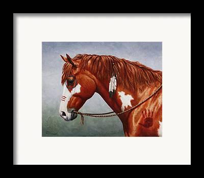 Chestnut Paint Horse Framed Prints