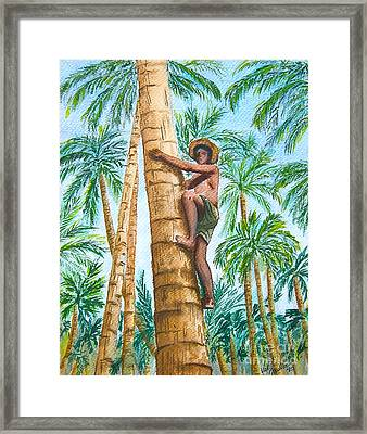 Native Climbing Palm Tree Framed Print by Val Miller