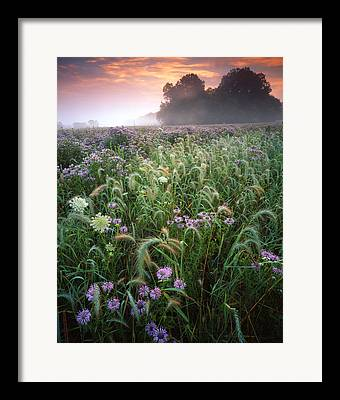 Mchenry County Conservation District. Mchenry County Framed Prints