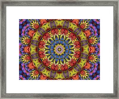 Natural Attributes 01 Horizontal Framed Print