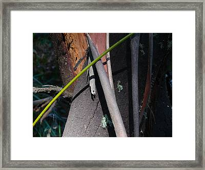 Framed Print featuring the photograph Natural Bands 3 by Evelyn Tambour