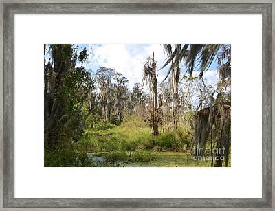 Natural Beauty Framed Print by Carol  Bradley