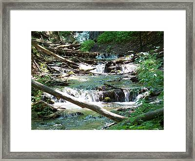 Natural Beauty Framed Print by Lisa Young