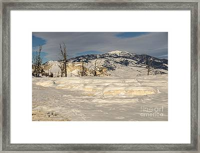 Natural Beauty Framed Print by Sue Smith